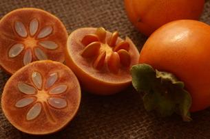柿の写真素材 [FYI00290207]