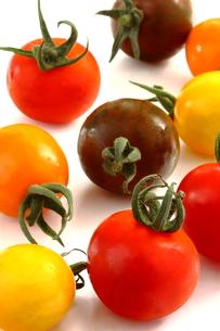 カラフルなトマトの写真素材 [FYI00290234]