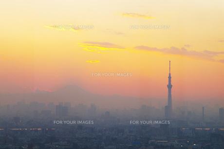 スカイツリーと富士の写真素材 [FYI00290348]