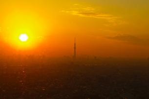 スカイツリーに落ちる夕日の写真素材 [FYI00290383]