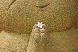 お花とお地蔵様の写真素材 [FYI00290563]