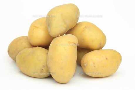 山積みのジャガイモの素材 [FYI00290762]