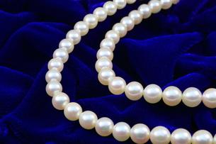 真珠のネックレスの写真素材 [FYI00290778]