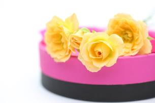 バラとギフトボックスの写真素材 [FYI00290832]