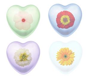 ハートマークと花の写真素材 [FYI00290862]