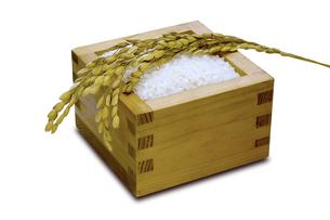 升と米の写真素材 [FYI00291095]