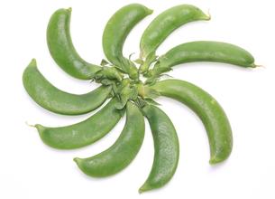 エンドウ豆の写真素材 [FYI00291134]