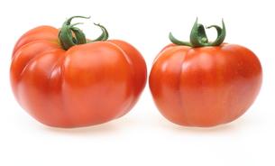 トマトの写真素材 [FYI00291437]