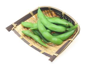 枝豆の写真素材 [FYI00291450]