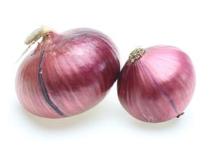 紫玉葱の写真素材 [FYI00291526]