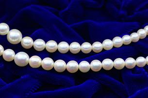 真珠の首飾りの写真素材 [FYI00291577]