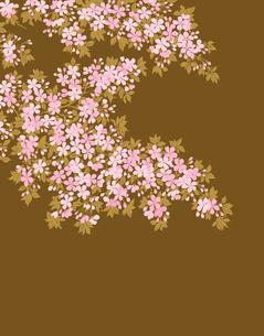 パターンの写真素材 [FYI00293891]