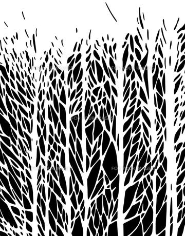 パターンの素材 [FYI00295984]