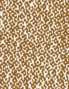 パターンの素材 [FYI00296090]
