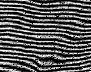 パターンの素材 [FYI00296134]
