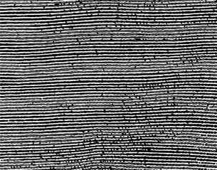 パターンの素材 [FYI00296141]