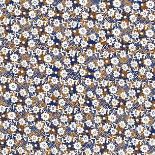 パターンの素材 [FYI00297033]