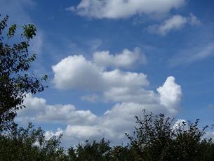 夏雲の写真素材 [FYI00297238]