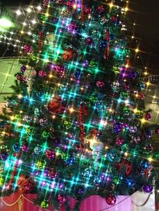 夜景、イルミネーション、キラキラ、クリスマスツリーの写真素材 [FYI00297336]