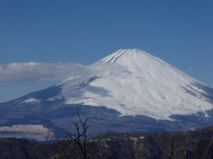 富士、霊峰の写真素材 [FYI00297361]