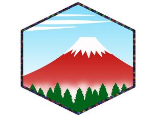 紅富士の写真素材 [FYI00297622]
