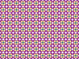 花形のパターンの写真素材 [FYI00297801]