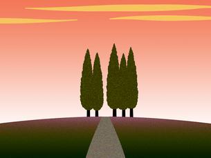丘の上の糸杉の写真素材 [FYI00297864]