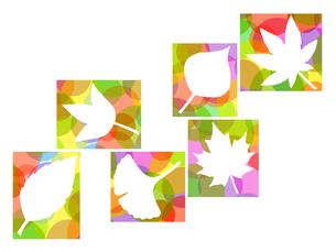木の葉のイラストの写真素材 [FYI00297927]