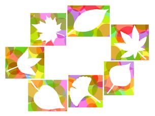 木の葉のイラストの写真素材 [FYI00297930]