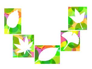 木の葉のイラストの写真素材 [FYI00297932]