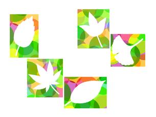 木の葉のイラストの写真素材 [FYI00297933]