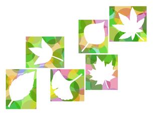 木の葉のイラストの写真素材 [FYI00297937]