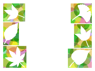 木の葉のイラストの写真素材 [FYI00297971]