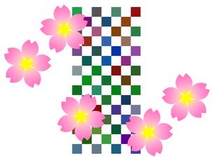 桜の花と市松模様の写真素材 [FYI00298263]