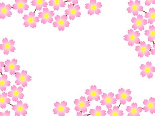 桜のフレームの写真素材 [FYI00298283]