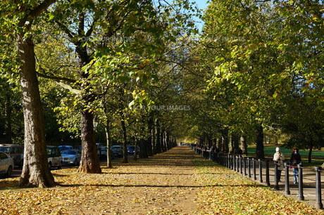 ロンドンの公園の写真素材 [FYI00298441]