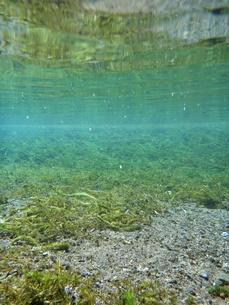 湧水の水中風景の写真素材 [FYI00299047]