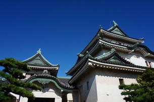 青空に映える和歌山城の写真素材 [FYI00299130]