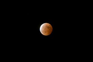 皆既月食の写真素材 [FYI00299704]