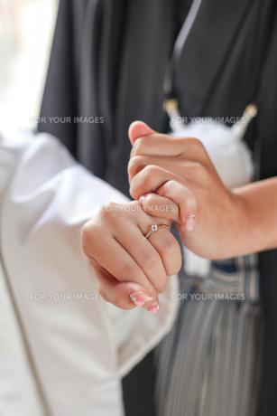 和装結婚式の写真素材 [FYI00299728]