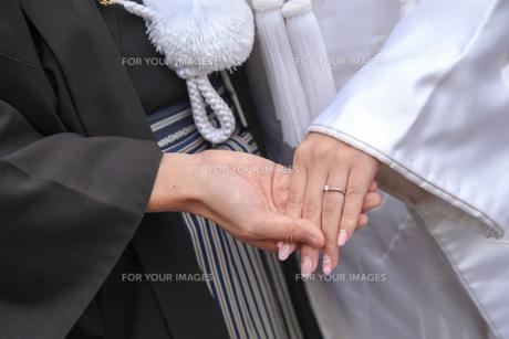 和装結婚式の写真素材 [FYI00299734]