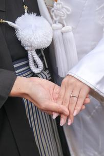 結婚式の写真素材 [FYI00299735]