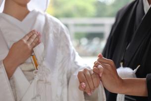 和装結婚式の写真素材 [FYI00299736]