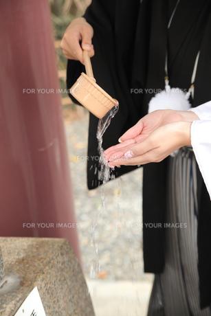 結婚式の写真素材 [FYI00299742]