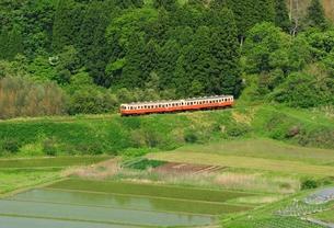 小湊鉄道の写真素材 [FYI00300040]