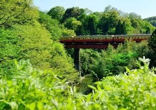 小湊鉄道の写真素材 [FYI00300044]