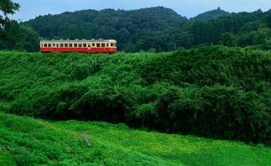 小湊鉄道の写真素材 [FYI00300053]