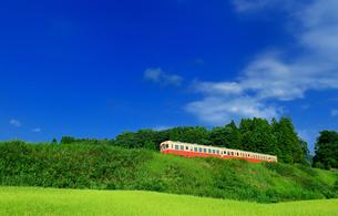 小湊鉄道の写真素材 [FYI00300073]