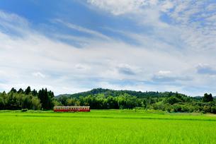 小湊鉄道の写真素材 [FYI00300083]