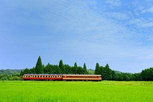 いすみ鉄道の写真素材 [FYI00300085]